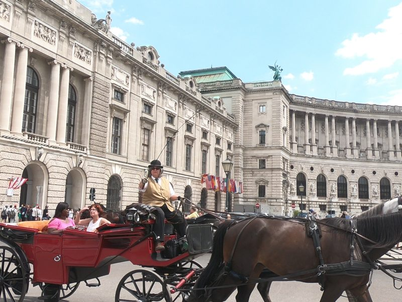 Vienna guide, horse carriage