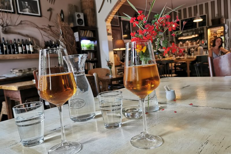 FROM BRATISLAVA: WINE TASTING of ORGANIC WINES
